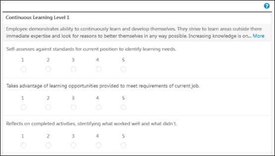 Performance Review Competency Assessment